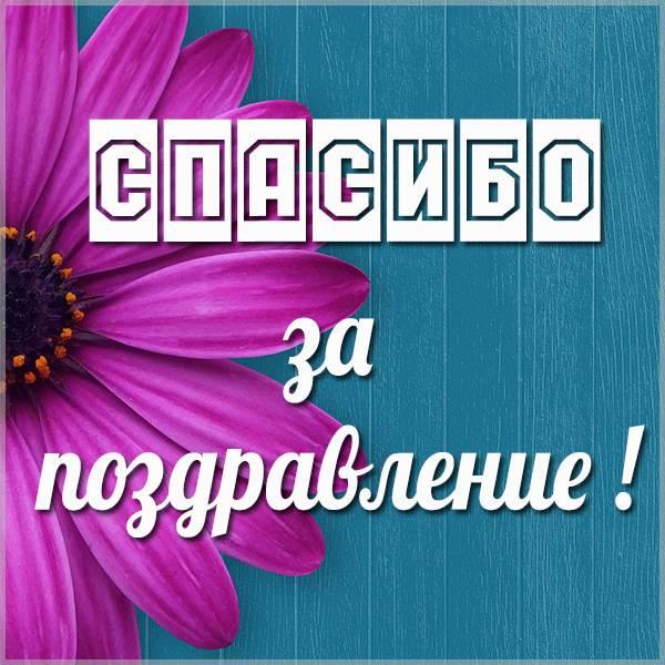 Картинка спасибо за поздравление мужчине - скачать бесплатно на otkrytkivsem.ru