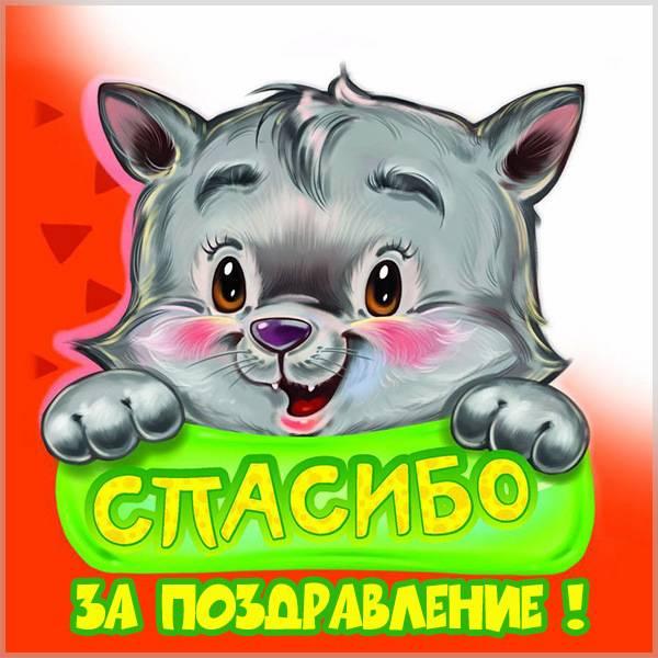 Картинка спасибо за поздравление - скачать бесплатно на otkrytkivsem.ru
