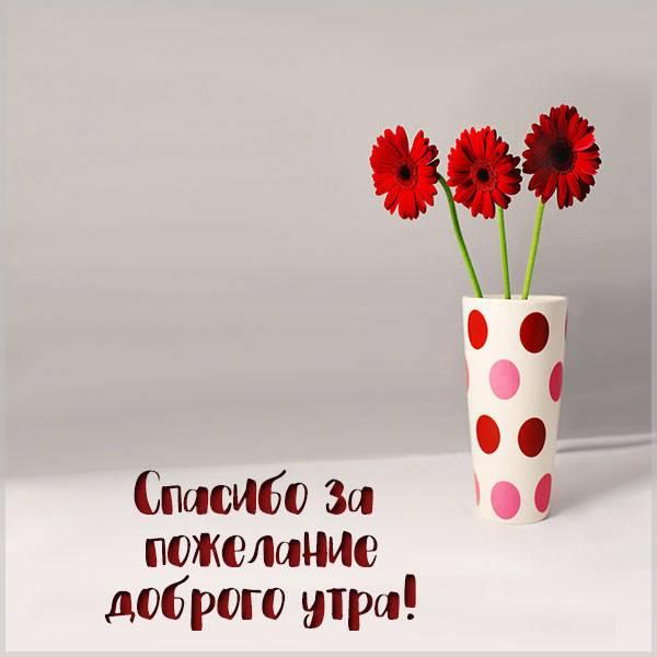Картинка спасибо за пожелание доброго утра - скачать бесплатно на otkrytkivsem.ru