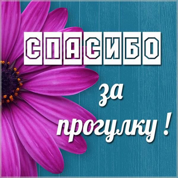 Картинка спасибо за прогулку - скачать бесплатно на otkrytkivsem.ru