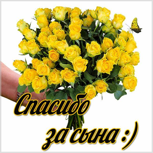 Картинка спасибо за сына красивая - скачать бесплатно на otkrytkivsem.ru