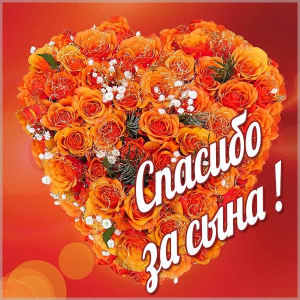 Картинка спасибо за сына маме - скачать бесплатно на otkrytkivsem.ru