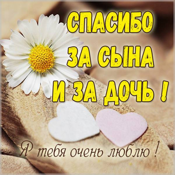 Картинка спасибо за сына спасибо за дочь - скачать бесплатно на otkrytkivsem.ru