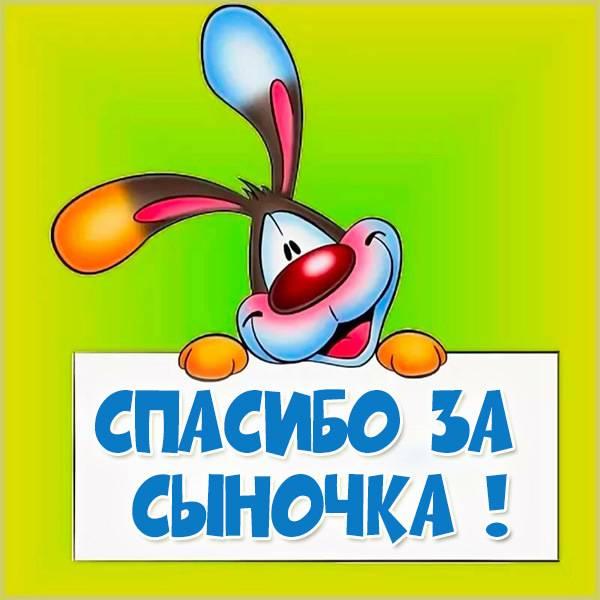 Картинка спасибо за сына - скачать бесплатно на otkrytkivsem.ru