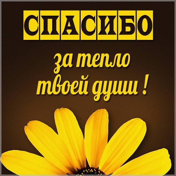 Картинка спасибо за тепло твоей души - скачать бесплатно на otkrytkivsem.ru