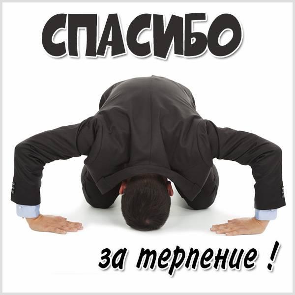 Картинка спасибо за терпение - скачать бесплатно на otkrytkivsem.ru