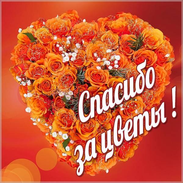 Картинка спасибо за цветы красивая - скачать бесплатно на otkrytkivsem.ru