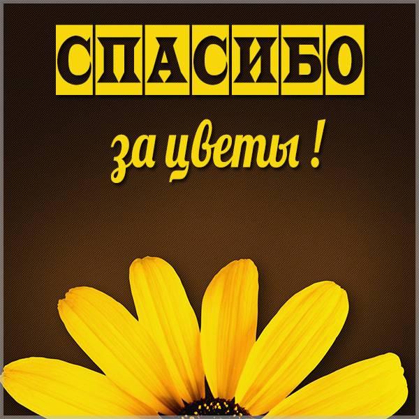 Картинка спасибо за цветы - скачать бесплатно на otkrytkivsem.ru