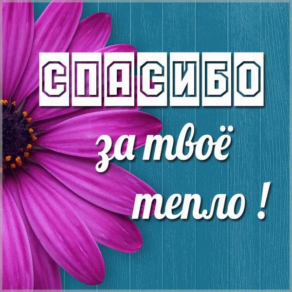 Картинка спасибо за твое тепло - скачать бесплатно на otkrytkivsem.ru