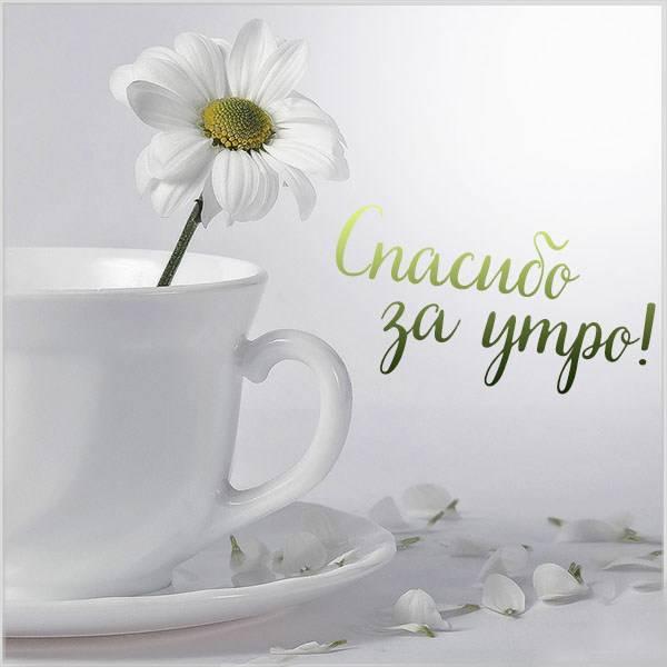Картинка спасибо за утро - скачать бесплатно на otkrytkivsem.ru