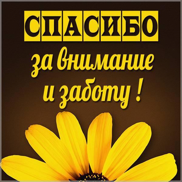 Картинка спасибо за внимание и заботу - скачать бесплатно на otkrytkivsem.ru