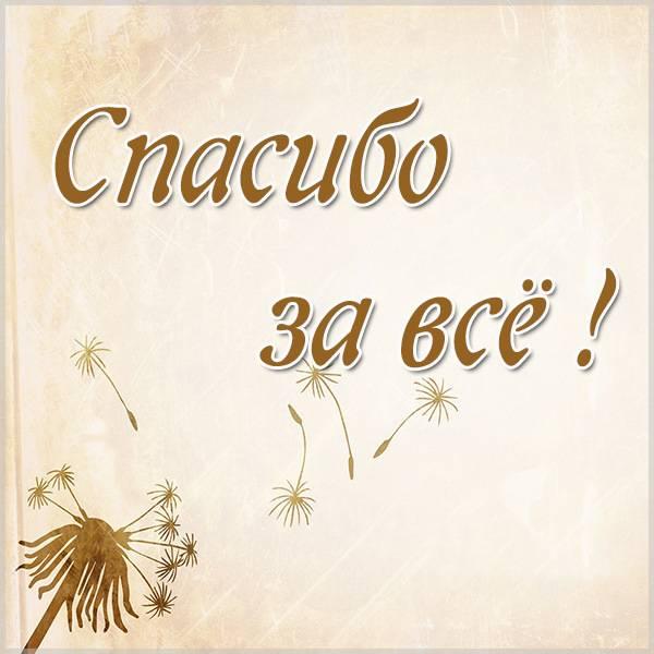 Картинка спасибо за все женщине красивая - скачать бесплатно на otkrytkivsem.ru