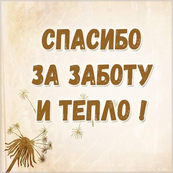 Картинка спасибо за заботу и тепло - скачать бесплатно на otkrytkivsem.ru