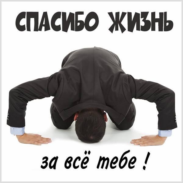 Картинка спасибо жизнь за все тебе - скачать бесплатно на otkrytkivsem.ru