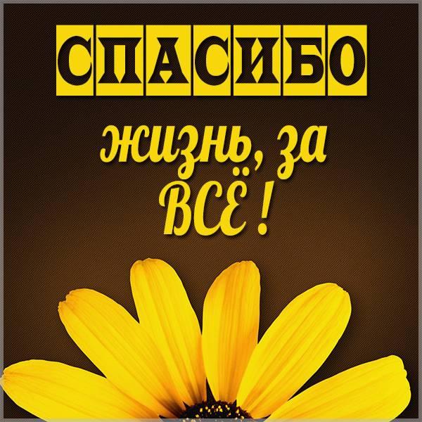 Картинка спасибо жизнь за все - скачать бесплатно на otkrytkivsem.ru