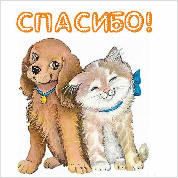 Картинка спасибо - скачать бесплатно на otkrytkivsem.ru