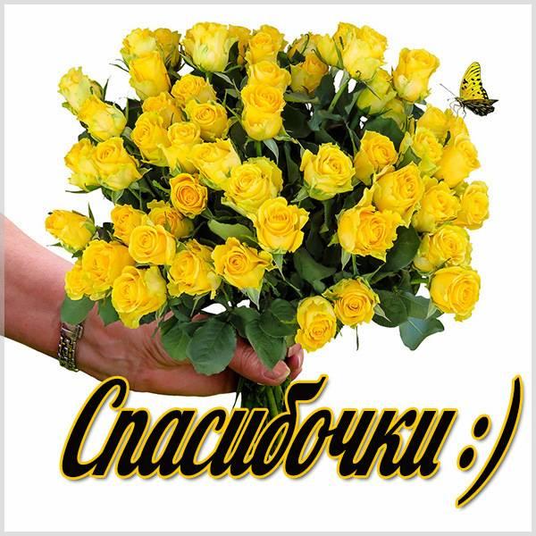 Картинка спасибочки - скачать бесплатно на otkrytkivsem.ru