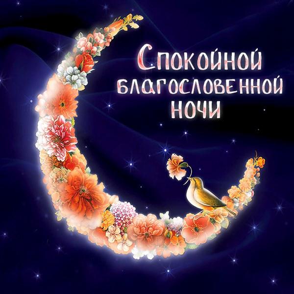 Картинка спокойной благословенной ночи красивая - скачать бесплатно на otkrytkivsem.ru
