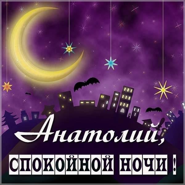 Картинка спокойной ночи Анатолий - скачать бесплатно на otkrytkivsem.ru
