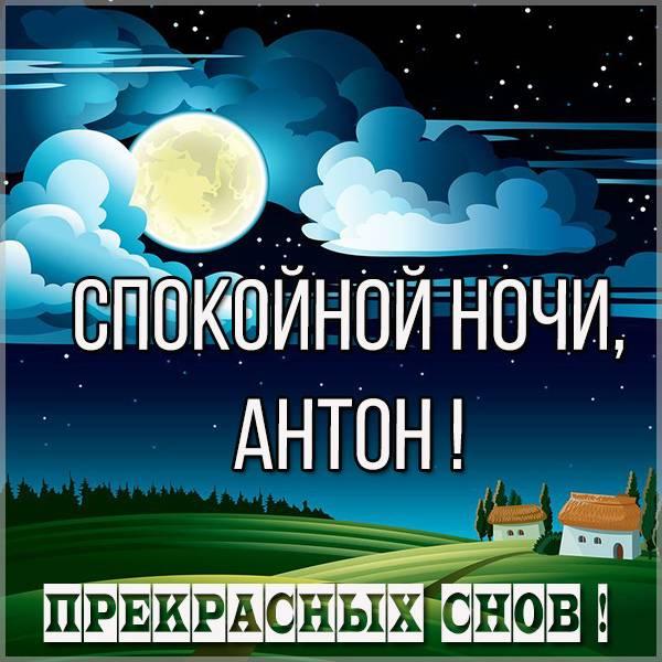 Картинка спокойной ночи Антон - скачать бесплатно на otkrytkivsem.ru