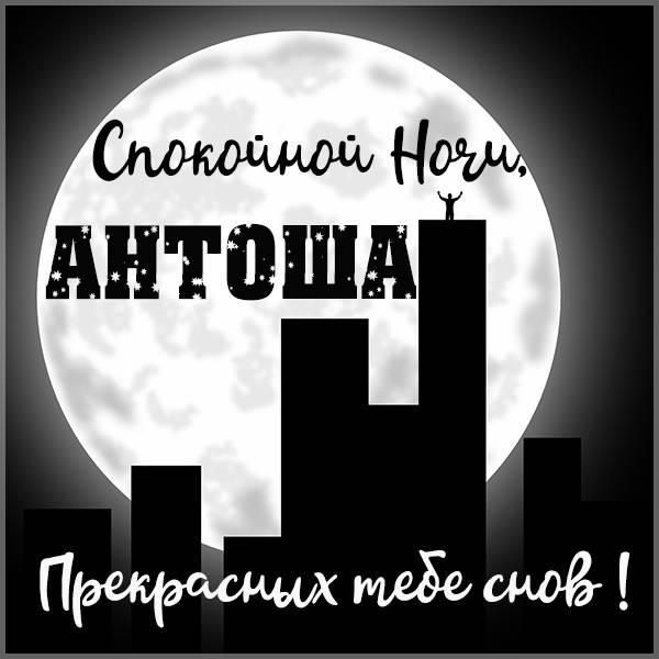 Картинка спокойной ночи Антоша - скачать бесплатно на otkrytkivsem.ru