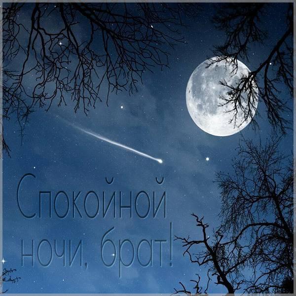 Картинка спокойной ночи брат - скачать бесплатно на otkrytkivsem.ru
