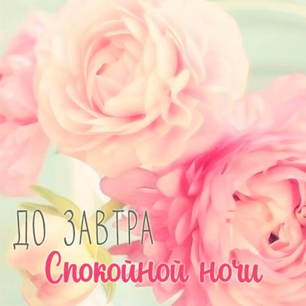 Картинка спокойной ночи до завтра красивая - скачать бесплатно на otkrytkivsem.ru
