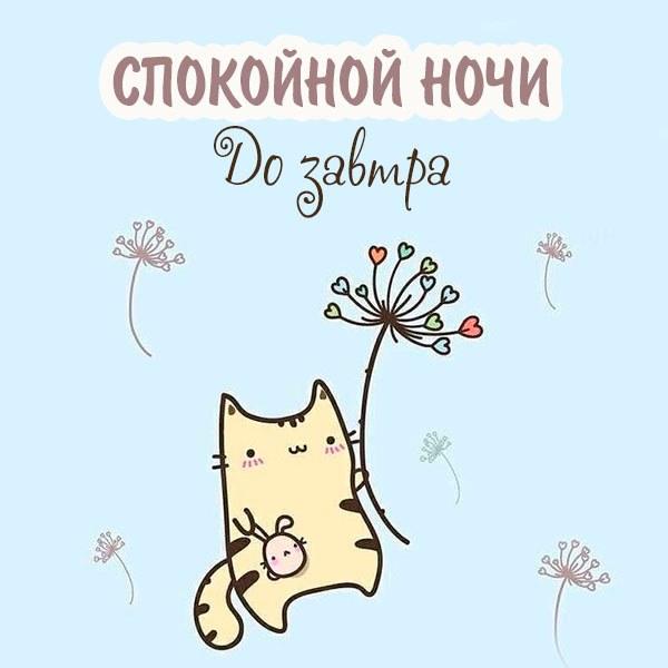 Картинка спокойной ночи до завтра необычная - скачать бесплатно на otkrytkivsem.ru