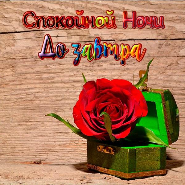 Картинка спокойной ночи до завтра прикольная - скачать бесплатно на otkrytkivsem.ru