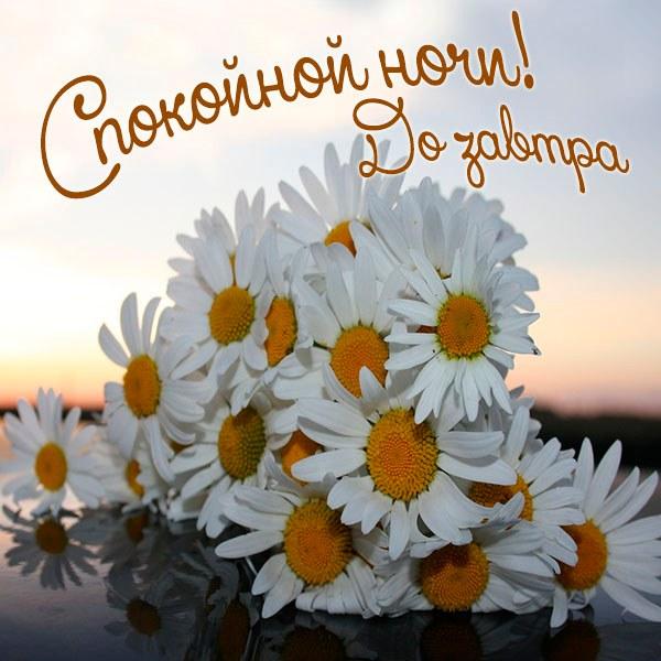 Картинка спокойной ночи до завтра - скачать бесплатно на otkrytkivsem.ru