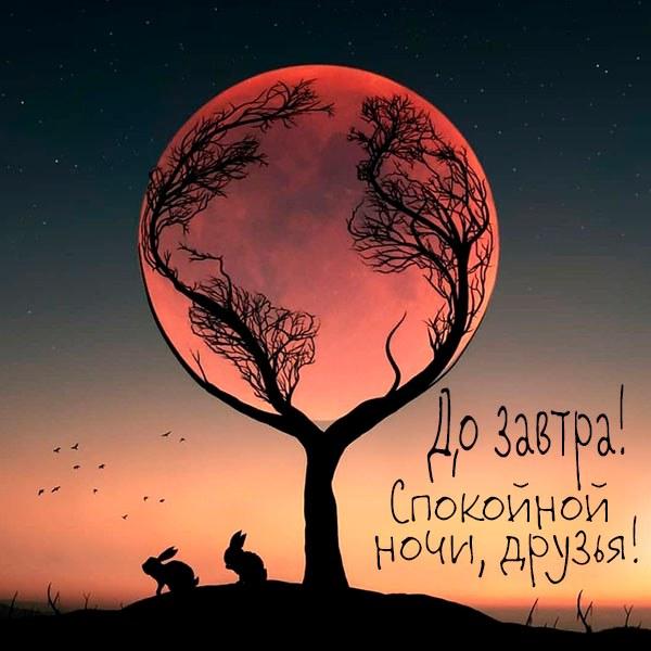 Картинка спокойной ночи друзья до завтра - скачать бесплатно на otkrytkivsem.ru