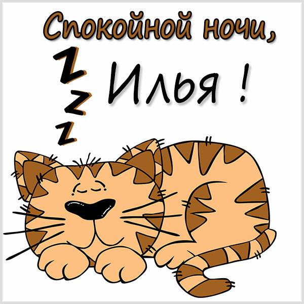 Картинка спокойной ночи Илья - скачать бесплатно на otkrytkivsem.ru