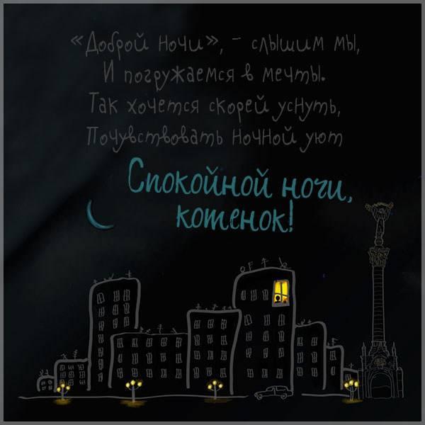 Картинка спокойной ночи котенок мужчине - скачать бесплатно на otkrytkivsem.ru