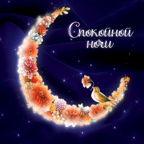 Картинка спокойной ночи красивая интересная женщине - скачать бесплатно на otkrytkivsem.ru
