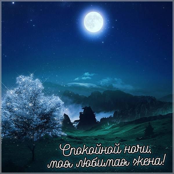 Картинка спокойной ночи красивая необычная жене - скачать бесплатно на otkrytkivsem.ru