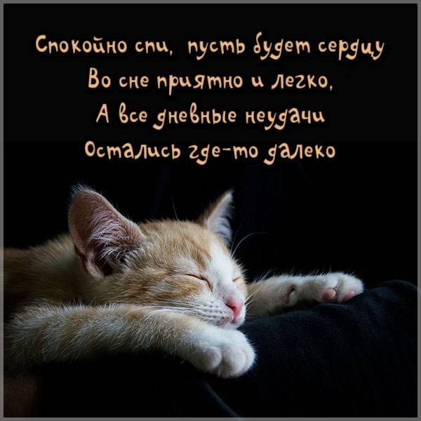 Картинка спокойной ночи красивая папе - скачать бесплатно на otkrytkivsem.ru