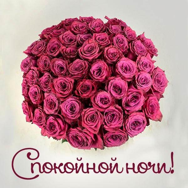 Картинка спокойной ночи красивая романтичная - скачать бесплатно на otkrytkivsem.ru