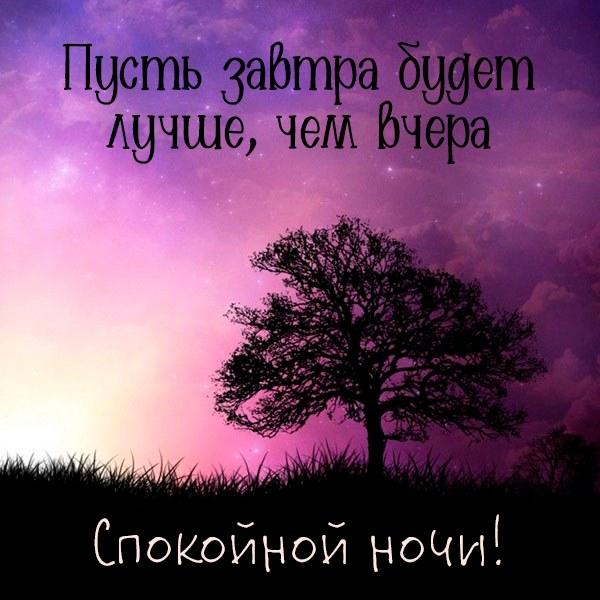 Картинка спокойной ночи красивая с надписью летняя - скачать бесплатно на otkrytkivsem.ru