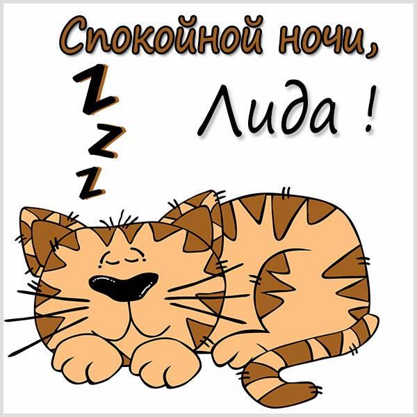 Картинка спокойной ночи Лида - скачать бесплатно на otkrytkivsem.ru