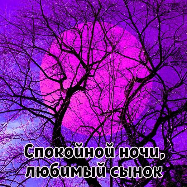 Картинка спокойной ночи любимый сынок - скачать бесплатно на otkrytkivsem.ru
