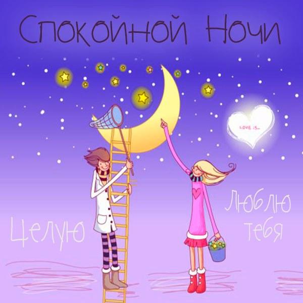 Картинка спокойной ночи люблю целую - скачать бесплатно на otkrytkivsem.ru