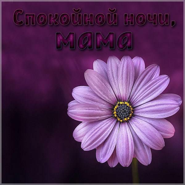 Картинка спокойной ночи мама с надписью - скачать бесплатно на otkrytkivsem.ru