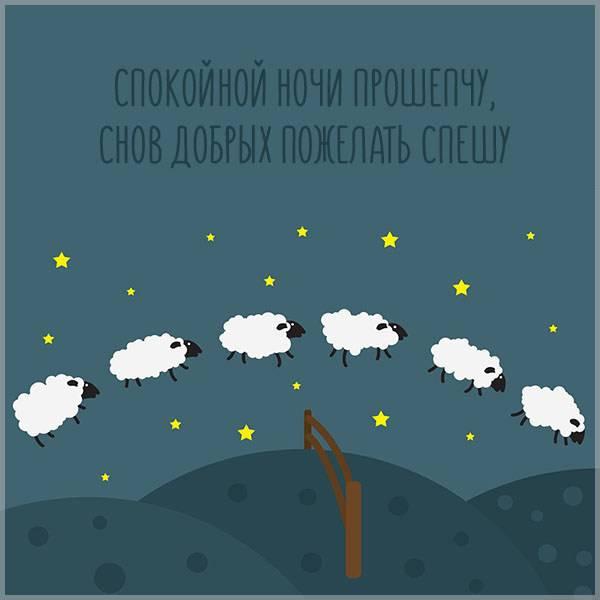 Картинка спокойной ночи мама смешная - скачать бесплатно на otkrytkivsem.ru
