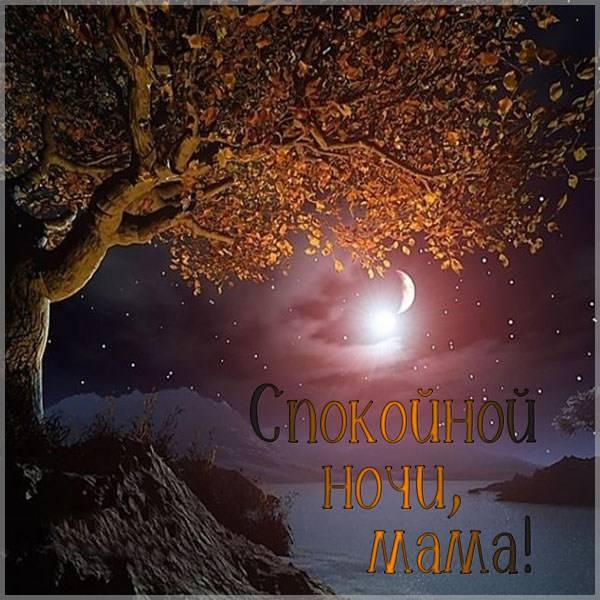 Картинка спокойной ночи маме от дочери красивая - скачать бесплатно на otkrytkivsem.ru