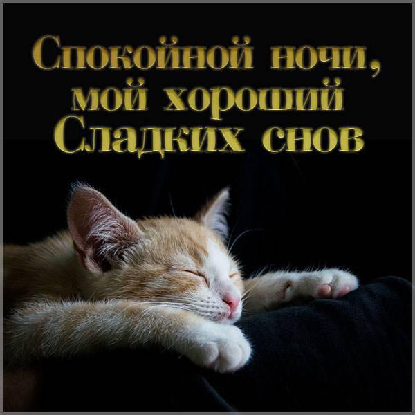 Картинка спокойной ночи мой хороший сладких снов - скачать бесплатно на otkrytkivsem.ru