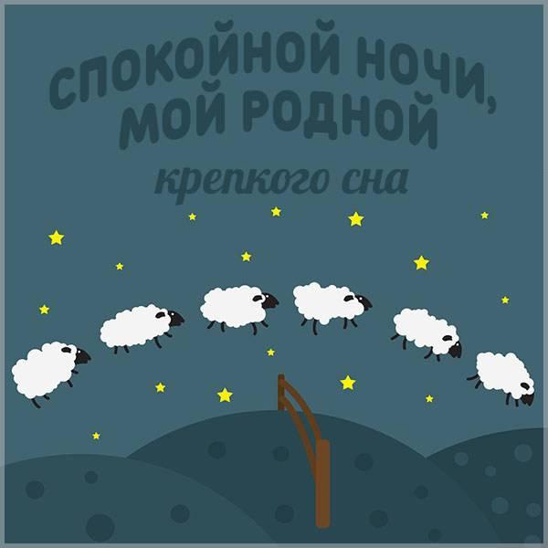 Картинка спокойной ночи мой родной прикольная - скачать бесплатно на otkrytkivsem.ru