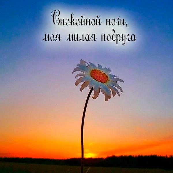 Картинка спокойной ночи моя милая подруга - скачать бесплатно на otkrytkivsem.ru