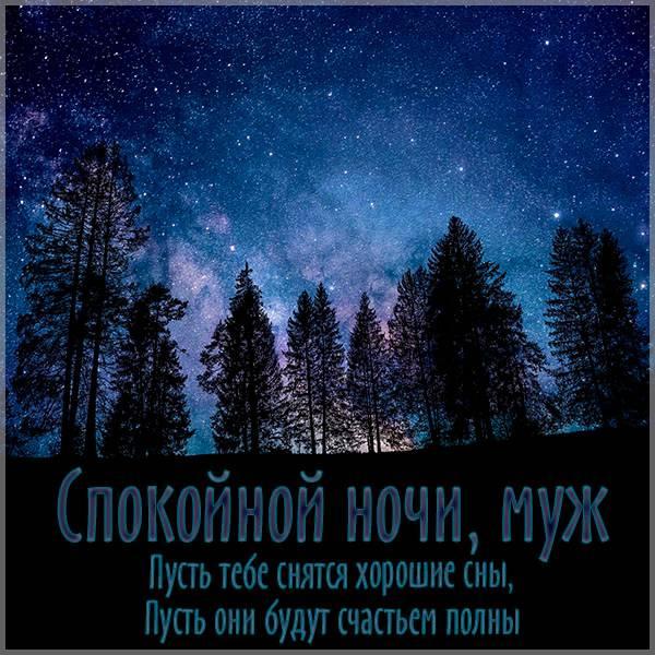 Картинка спокойной ночи мужу - скачать бесплатно на otkrytkivsem.ru