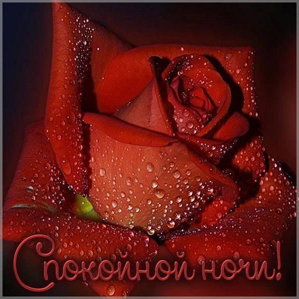 Картинка спокойной ночи новая стильная - скачать бесплатно на otkrytkivsem.ru