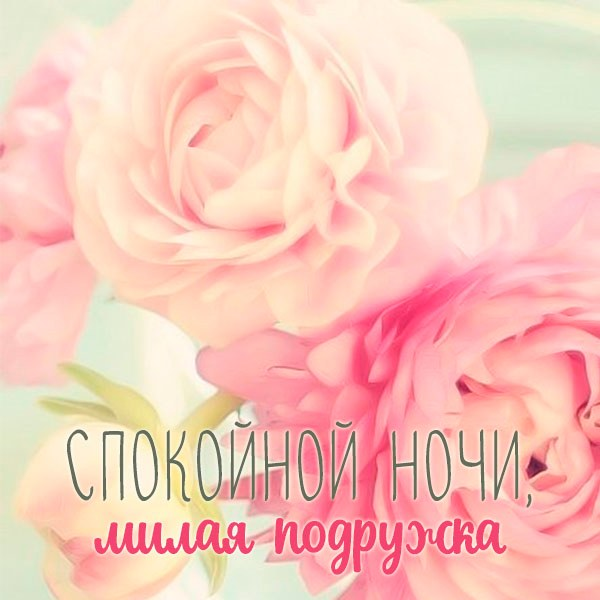 Картинка спокойной ночи подружка красивая новая - скачать бесплатно на otkrytkivsem.ru